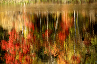 Autumn Reflections in the Lagoon, Horn Pond, Woburn, MA